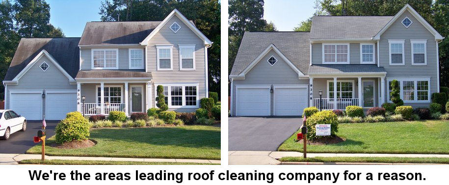 Roof Cleaning Northern Virginia